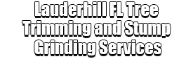 Lauderhill FL Tree Trimming and Stump Grinding Services